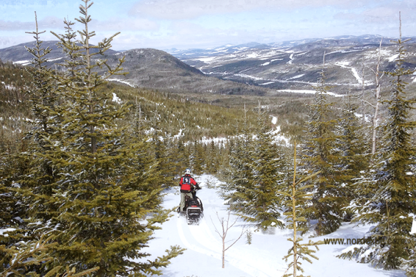2 days Snowmobile Package Off-piste in Charlevoix