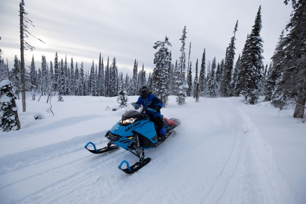 Snowmobile initiation, dog sled, snowshoe and SPA passport -40%